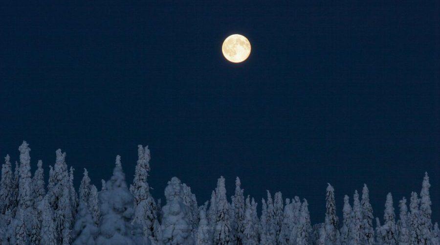 Excursiones con luna llena