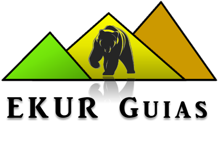 logo gigante